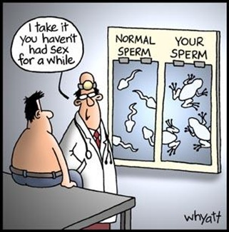 sperm-into-frog